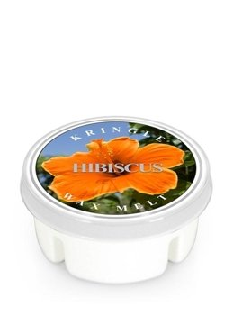 Kringle Candle WOSK zapachowy Hibiscus